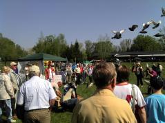 Guten Flug: Friedenstauben steigen in den Himel (Foto: ASC)
